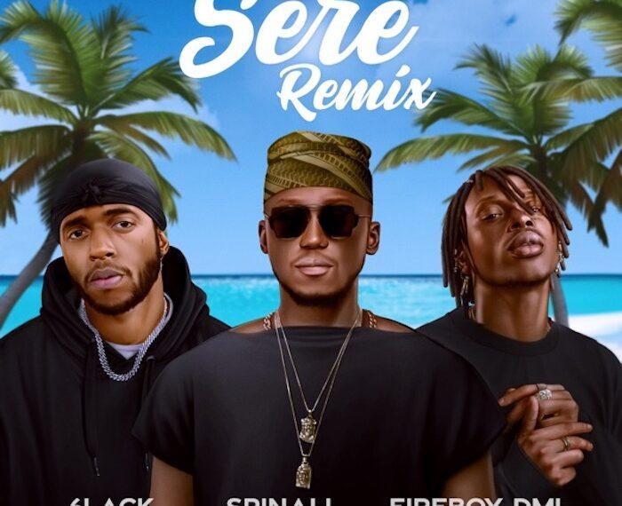 sere remix mp download